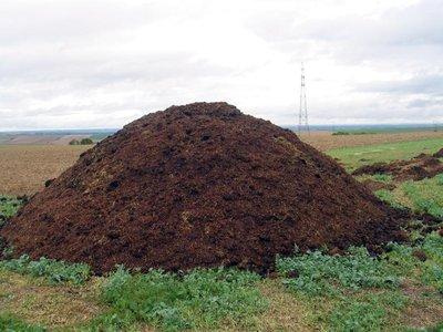 engrais naturels afrique et maghreb a preciser sac en jute de 50kgs 40 tonne cote d. Black Bedroom Furniture Sets. Home Design Ideas
