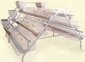 cages pour poules pondeuses 5 cote d ivoire producteur recherche de fournisseur espaceagro. Black Bedroom Furniture Sets. Home Design Ideas