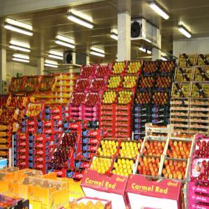 Annonceur de maroc je suis negociant fruits et legumes de