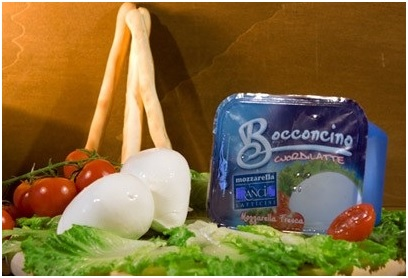 vente YOGURT-MOZZARELLA X TABLE ET PIZZERIA-