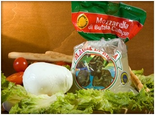vente MOZZARELLA POUR TABLE-PIZZERIA