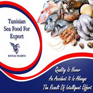Poissons de la m diterran en sauvage et elevage for Vente poisson rouge tunisie