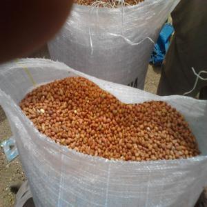 arachides haricots sesames 900cfa le kg sacs de 50kg sacs de 25kg paquets de 2 a 0. Black Bedroom Furniture Sets. Home Design Ideas