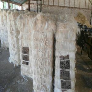 Platre Et Filasse la filasse pour platre - 1200$ - tonne - kenya groupement recherche