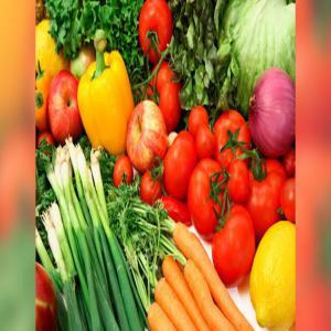 Piment vert rouge starter tomate s ches 20 10 jours tunisie producteur recherche de - Haricot vert fruit ou legume ...