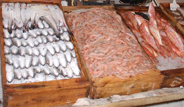 Fourisseur poissons frais et conditionne france - Cuisiner poisson congele ...