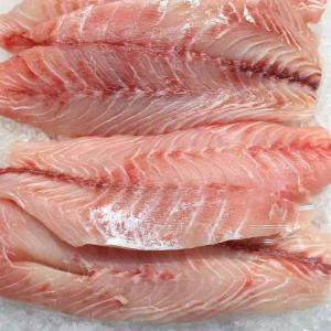 Frozen Tilapia Fish Fillet 2000 1000 Tons Sweden Wholesaler Customer Search Espaceagro